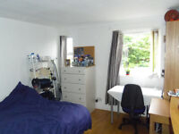 One room to rent in Limehouse view on Thames river