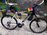 Mens giant mountain bike