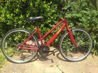 Ladies hybrid bike 29er