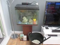 Fishtank with stand/equipment ready to go