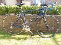 Pinnacle Sentinal 2.0 Mens Road Bike