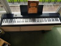 Casio CDP-130BKC5 Digital Piano, Full 88-key
