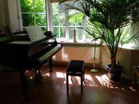 Yamaha Baby Grand Piano - Polished Ebony