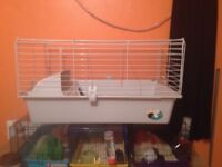 4 large hamster cages and 1 large cage for guineapig /small rabbit