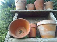 variety terracotta flower pots for sale. never been used. ornamental to look at.