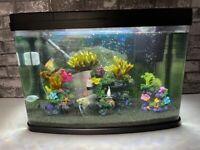 65L fish tank with fish and all accessories