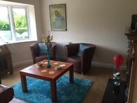 2 Brown leather armchairs and 1 solid wood coffee table
