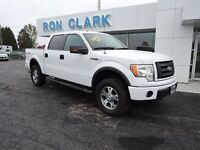 2010 Ford F-150 FX4 Local one owner