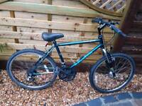 Childs Raleigh activator mountain bike ages 8 to 12