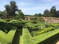 Estate gardener looking for work in Surrey/West Sussex