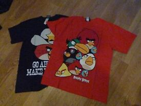 Boys Angry Birds T-shirts aged 13 years