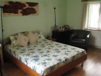 A double room located in Hayes in a shared home.