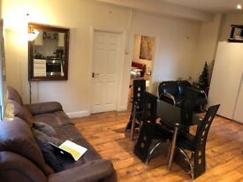 Large Double Room in a 2 Bedroom Flat (Brick Lane)