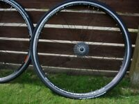 Campagnolo road wheels plus tyres and cassette 11-25