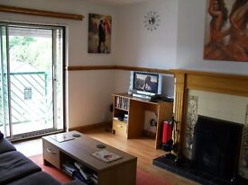 Large Double Room in Shared Apartment, Upper Malone Park.
