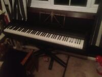 Korg Professional Electronic Digital Piano SP300