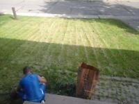 free quotes for lawn care and yard clean up
