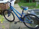 Ladies Apollo front suspension mountain bike