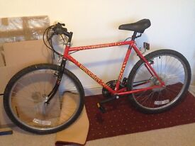 Man's Peugeot bicycle, excellent condition, a lovely bright red machine!
