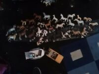 Swhech model horses and collectors horse trailer and jeep .