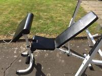 Weight bench, squat stand & preacher pad