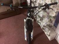 Cube LTD bike