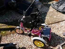 Quest 88 Kitten Trike