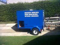 Dog transport or box trailer
