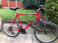 adults raliegh mountain bike