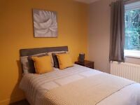 Amazing rooms available now