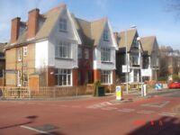 Luxury Victorian Studio Flat 8 Mins walk to Surbiton Station central heat, en suite, intercom
