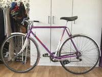 Giant speeder road bike