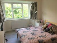 Short-term room let 6/8-14/9 in a sunny Peckham flat