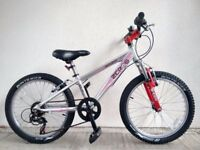 "FREE Lights with (2673) 20"" Lightweight Aluminium RALEIGH MOUNTAIN BIKE BICYCLE Age: 6-9, 120-135 cm"