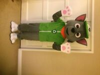 UK SELLER new adult look alike Rocky Mascot Costume fancy dress Dog Dress