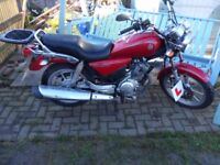 Yamaha YBR 125cc Custom 2009 excellent condition. good runner. very reliable.