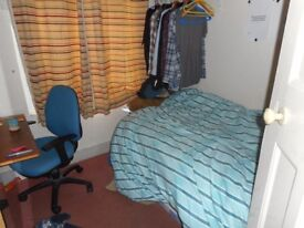 Leafy Zone 2: well designed single room for mature student or creative professional