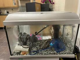 Fish tank setup!!!!