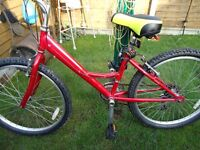 """Raleigh Bike 24"""" Wheels New Tyres & Tubes And Soft Gel Saddle"""