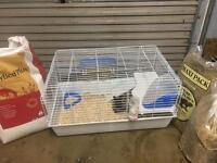 Rabbit and indoor cage!!