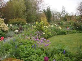 Gardeners, friendly & experienced