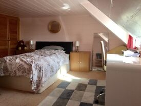 Room to rent in RYE