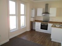 Modern 1 Bed Flat In Mutley With Private Parking **NO AGENCY FEES**