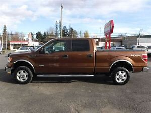 2012 Ford F-150 XLT Ecoboost Prince George British Columbia image 9