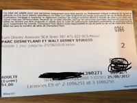 2x Disneyland Paris tickets for both parks - Due to expire 25 Aug 2018 - Currently £102 on website