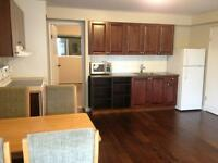 Newly renovated 1Br suite