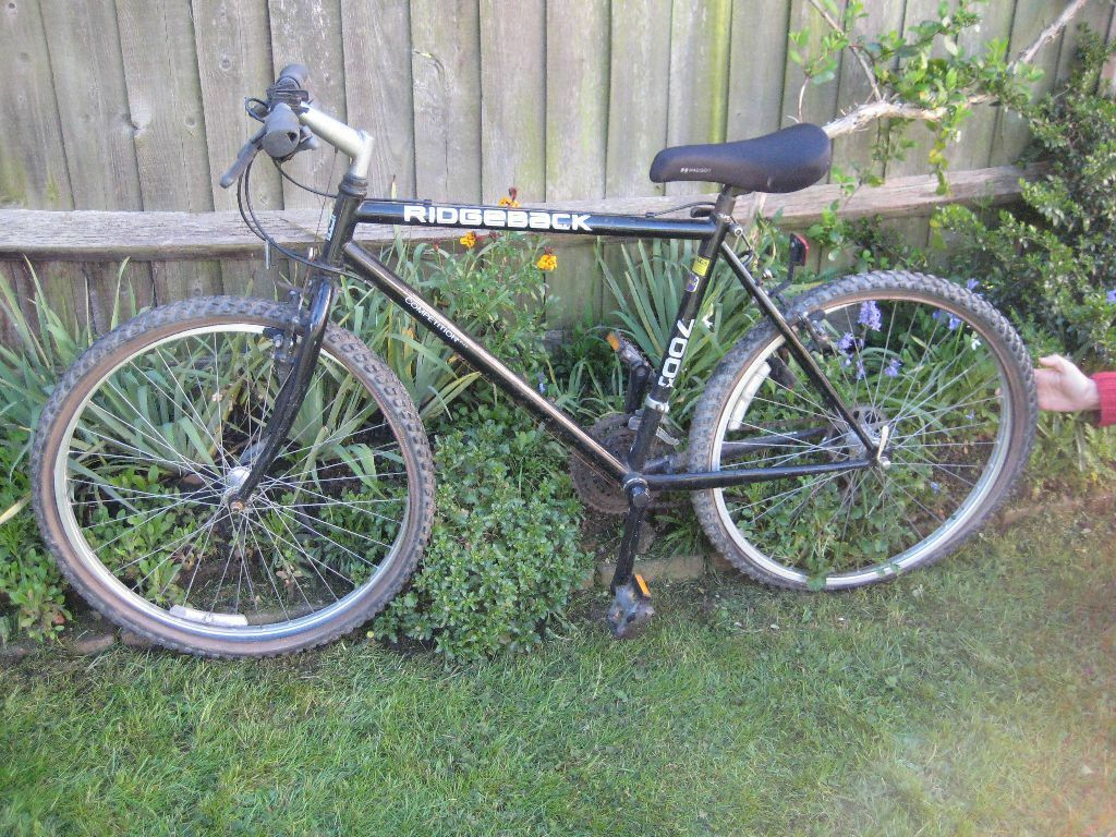 Ridgeback Competition 700 Lx Bicycle In Need Of Tender Loving