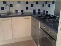 Domestic cleaner. We cover North London+CENTER:WC,W1,W2,SW1,EC,SE1+ E17,E5, E8,E2,NW1,NW5,NW8,NW3