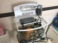 Fish Tank AA330PGC