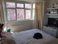 Large Affordable Double Room in Friendly Professional Houseshare - Bills Included